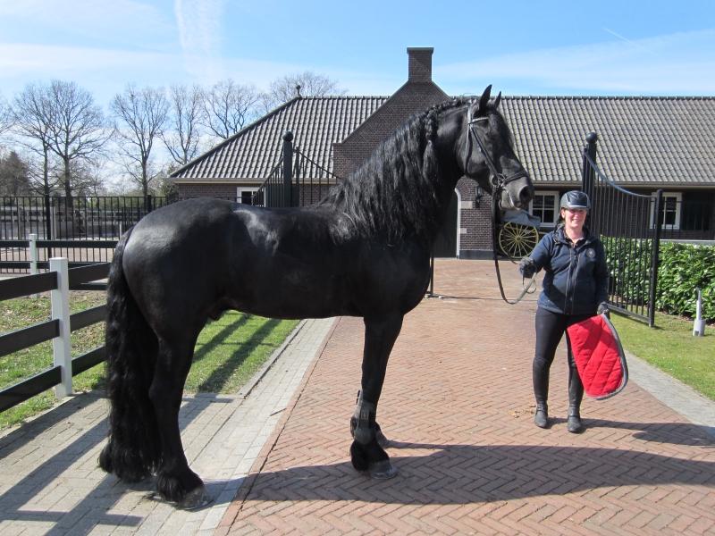 holland-april-2016-77